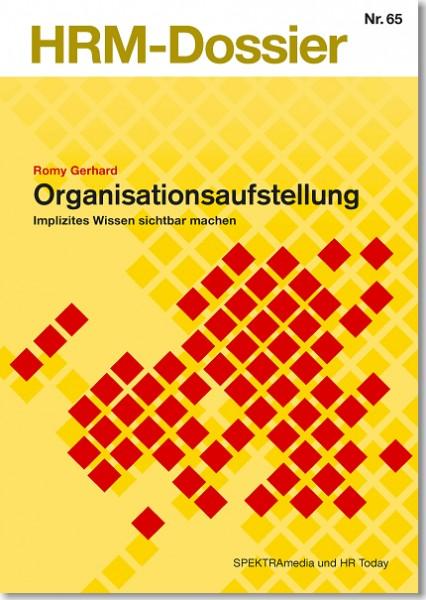 Nr. 65: Organisationsaufstellung